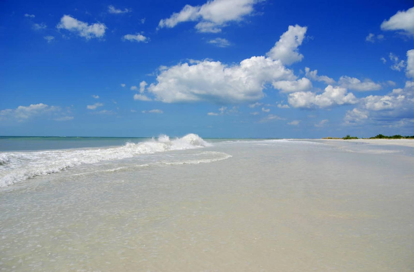 Flordia Beach